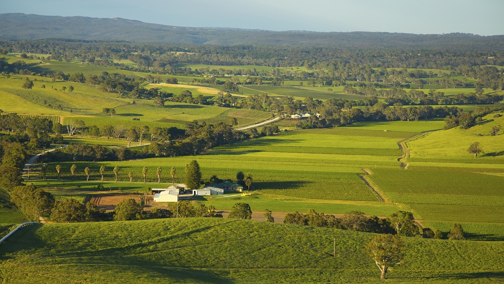 Dragan photos 81013 266 barossa helicopters for Flights buy now pay later