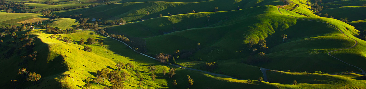 barossa-helicopters-barossa-valley-flights-charter-21
